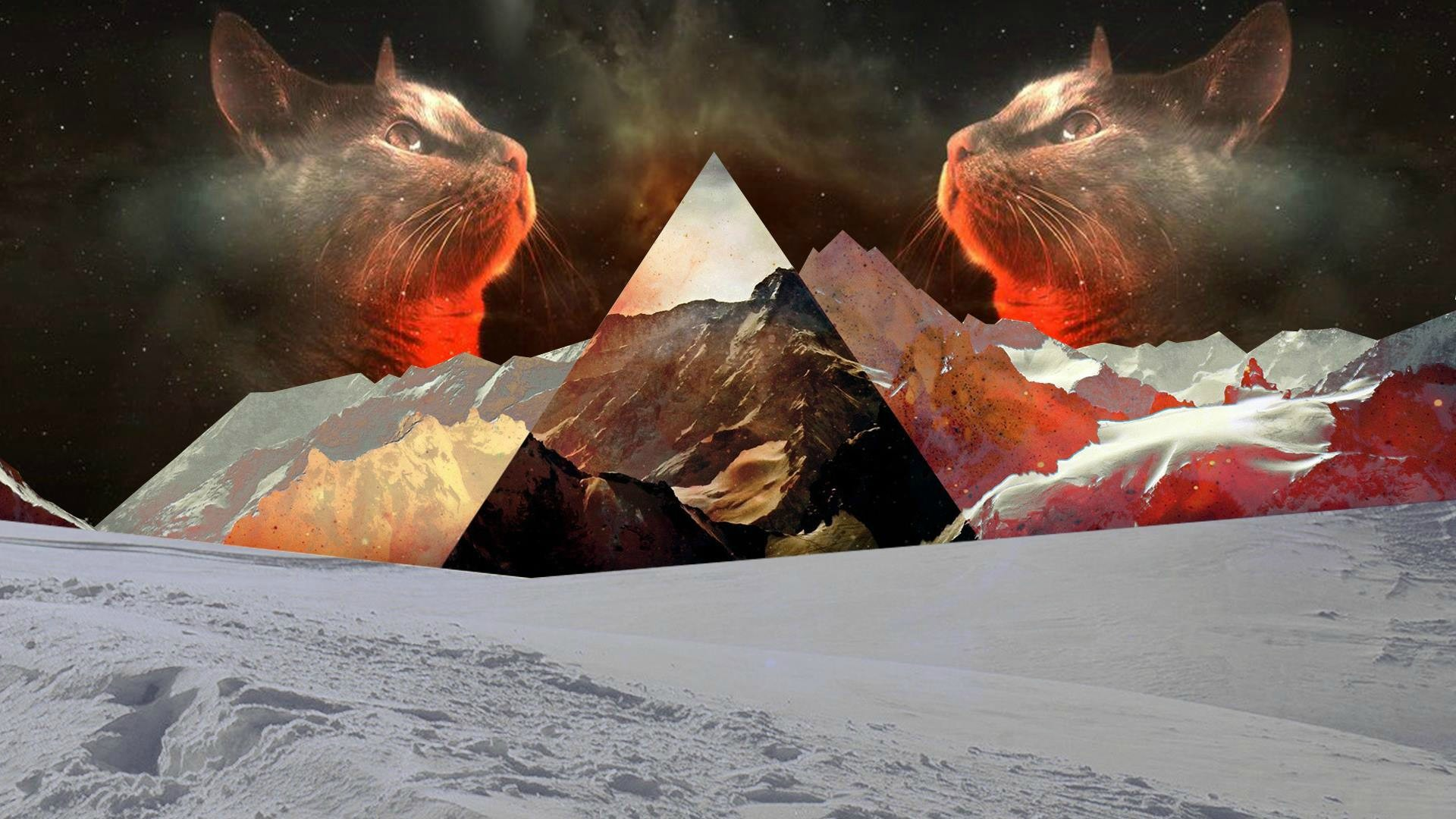 cat katze dreieck berg mountain triangle