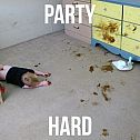 2013/09/party-hard