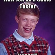 2013/09/wordpress-internet-memes-new-job-as-a-game-tester-jumanji